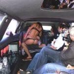 Striptease féminin en limousine