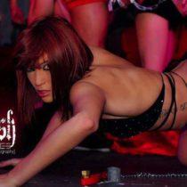 Stripteaseuse Cyane Beaune